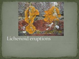 Lichenoid eruptions