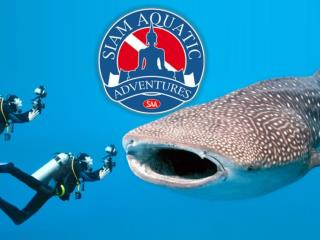 Scuba Training Phuket |Phuket Private Yacht Charter : Saim Aquatic Adventures