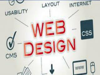 Propessional Web Design Company India