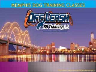 Memphis Dog Training Classes