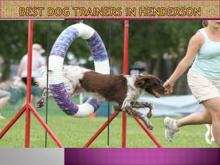 Best Dog Trainers in Henderson