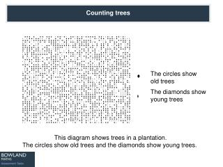 This diagram shows trees in a plantation. The circles show old trees and the diamonds show young trees.