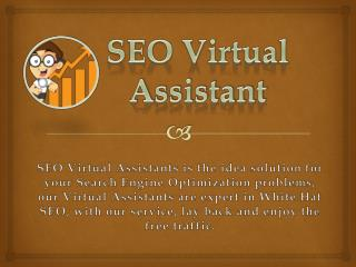 What to Expect From a Professional SEO Virtual Assistants