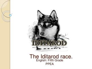 The Iditarod race.