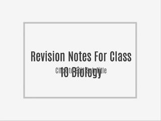 Revision Notes For Class 10 Physics