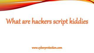 Cyber Security Tips: Hackers Script Kiddies
