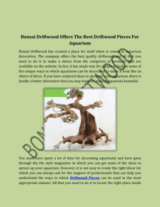 Bonsai Driftwood Offers The Best Driftwood Pieces For Aquarium