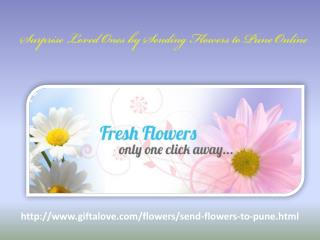 Surprise Loved Ones by Sending Flowers to Pune Online