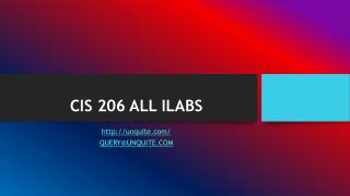 CIS 206 ALL ILABS