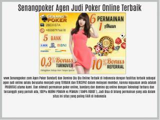 Senangpoker Agen Judi Poker Online Terbaik
