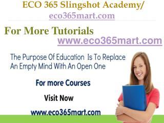 ECO 365 Slingshot Academy  / eco365mart.com
