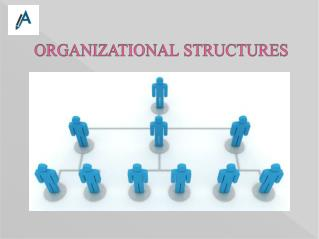 Report on Organization Structure