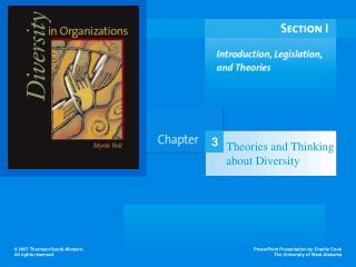 Theories and Thinking about Diversity