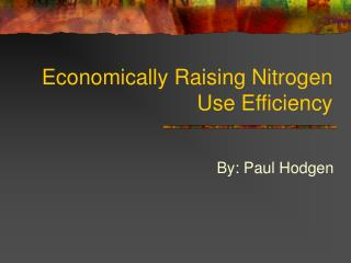 Economically Raising Nitrogen Use Efficiency