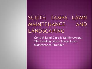 South Tampa landscaping & landscape lighting service