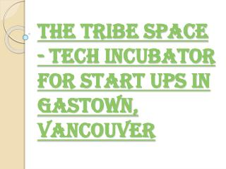 The Tribe Space - Best Tech Incubator for Start ups