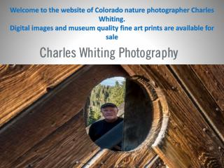 Digital images and museum quality fine art prints are available for sale
