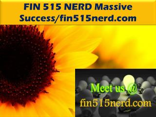 FIN 515 NERD Massive Success/fin515nerd.com