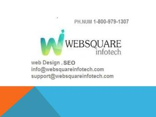 Web Development SEO Services Company in USA-Websquare Infotech,call on  1-8009791307