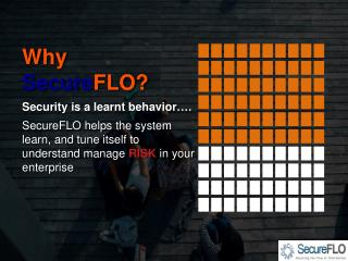 Why Secure FLO