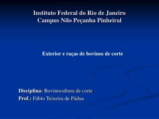 Instituto Federal do Rio de Janeiro Campus Nilo Pe anha Pinheiral