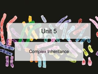 Complex Inheritance