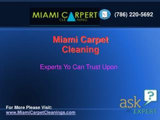 Professional Carpet Cleaning Service,