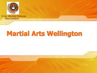 Martial Arts Training Wellington