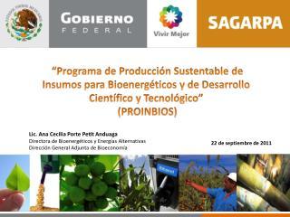 Programa de Producci n Sustentable de Insumos para Bioenerg ticos y de Desarrollo Cient fico y Tecnol gico   PROINBIOS