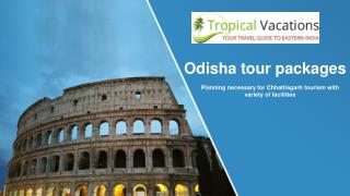How To Pick Up Chhattisgarh And Odisha Tour Packages By Observing 3 Aspects