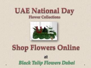 UAE National Day Flowers Collections - Black Tulip Flowers