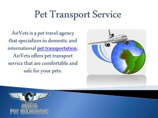 Pet Transport Service