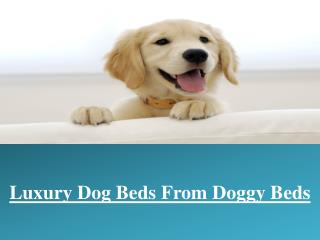 Buy Luxury Dog Beds from Doggy Beds