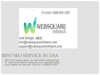 Best  SEO Services Company in USA-Websquare Infotech Call on  1-8009791307.