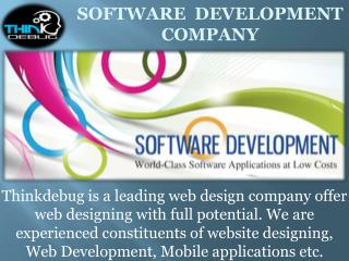 Thinkdebug, provides the best cost effective Web Designand Development Services in india.