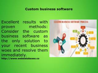 Custom business software