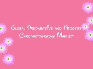 Global Preparative and Process Chromatography Market