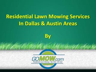 Lawn Maintenance Dallas