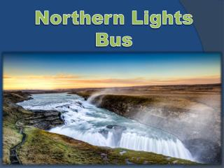 Northern lights bus
