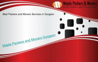 Packers and Movers Gurgaon - Maple Packers and Movers in Gurgaon