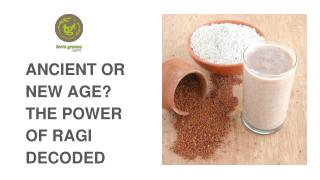 Ancient Or New Age? The Power of Ragi Decoded