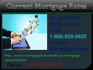 Have you demand on Current Mortgage Rates? Dial toll free@1-800-929-0625