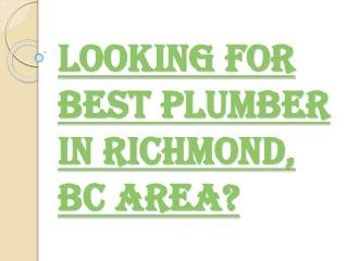 Looking for Best Plumbing Services in Richmond, BC Area?