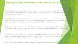 Top Dog Trading Foundations Course Advice to Start in The FOREX Market