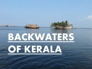 Placid Emerald backwaters of Kerala