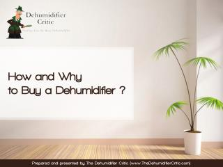 How and Why to Buy a Dehumidifier - The Dehumidifier Critic's Guide