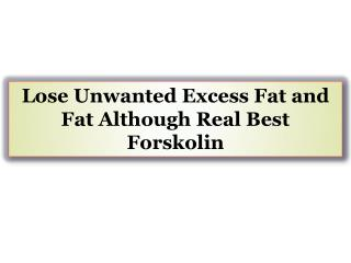 Lose Unwanted Excess Fat and Fat Although Real Best Forskolin