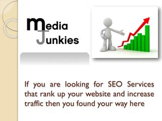 SEO Consultant Sydney-Media Junkies