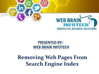 Removing Web Pages From Search Engine Index | Web Brain InfoTech