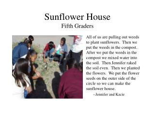 Sunflower House Fifth Graders
